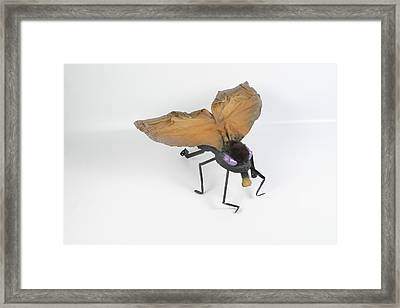 Jeanetic Violet-eyed Fly Framed Print by Michael Jude Russo
