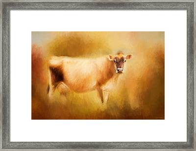 Jersey Cow  Framed Print by Michelle Wrighton