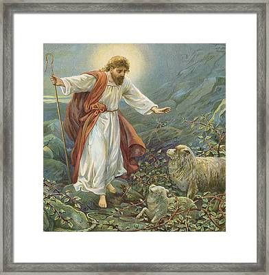 Jesus Christ The Tender Shepherd Framed Print by Ambrose Dudley