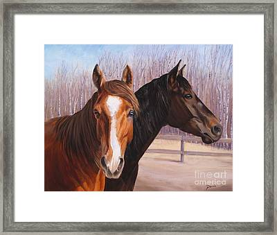 Jewels And Hollyberry Framed Print by Danielle Smith
