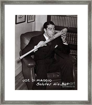 Joe Dimaggio Framed Print by Science Source