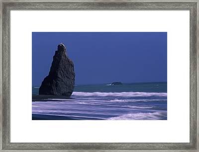 Jones Beach - Sinkyone Wilderness Framed Print by Soli Deo Gloria Wilderness And Wildlife Photography