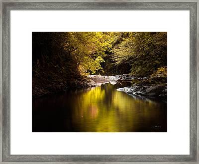 Jordan Creek Framed Print by Leland D Howard