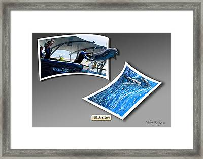 Jump Framed Print by Nelson Rodriguez