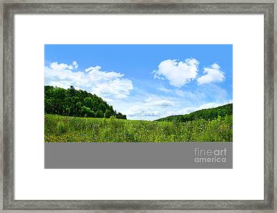 June Flowers With Bright Summer Sky Framed Print by Sandra Cunningham