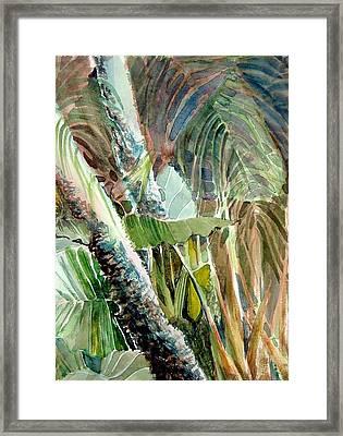 Jungle Light Framed Print by Mindy Newman