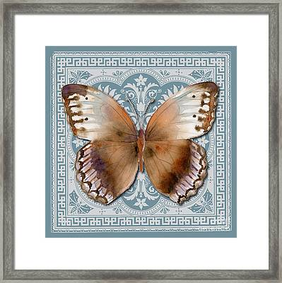 Jungle Queen Butterfly Design Framed Print by Amy Kirkpatrick