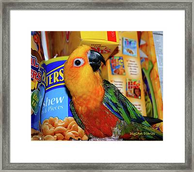 Junk Food Junkie Caught Framed Print by DigiArt Diaries by Vicky B Fuller