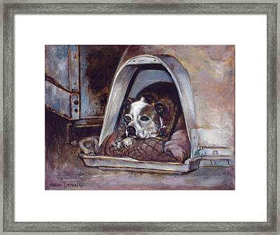 Junkyard Dog Framed Print by Harvie Brown