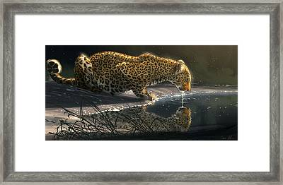 Just A Sip Framed Print by Aaron Blaise