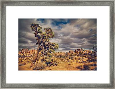 Just A Touch Of Madness Framed Print by Laurie Search