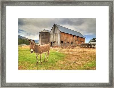 Just Another Day On The Farm Framed Print by Donna Kennedy