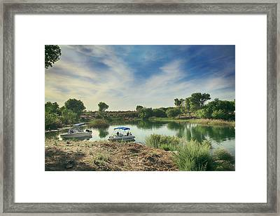 Just Bidin' Some Time  Framed Print by Laurie Search