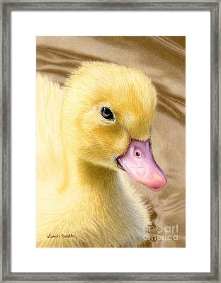 Just Ducky Framed Print by Sarah Batalka