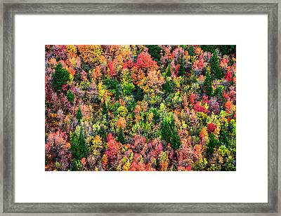 Just In Time Framed Print by Chad Dutson
