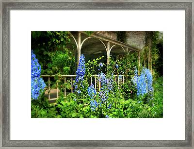 Just The Blues Framed Print by Diana Angstadt