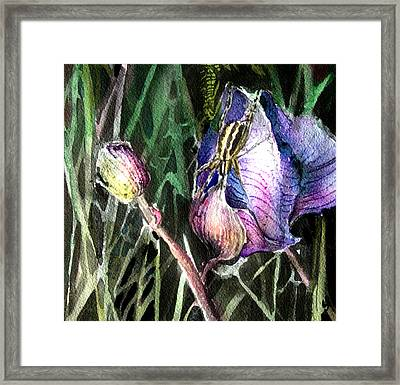 Just Visiting Framed Print by Mindy Newman