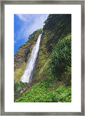Kaluahine Falls Framed Print by Peter French - Printscapes