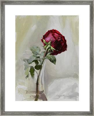 Big Rose Framed Print by Ben Hubbard