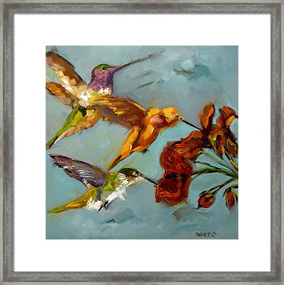 Kathy's Humming Birds Framed Print by Diane Whitehead