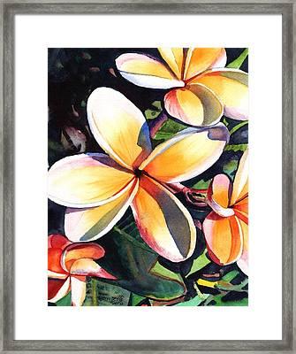 Kauai Rainbow Plumeria Framed Print by Marionette Taboniar