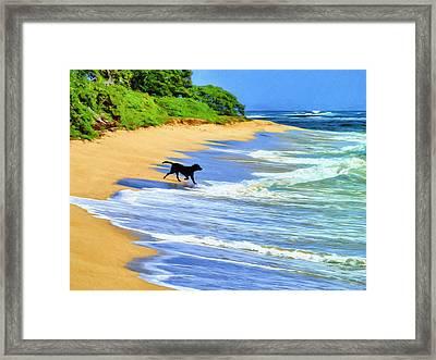 Kauai Water Dog Framed Print by Dominic Piperata