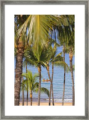 Kayakers Through Palms Framed Print by Ron Dahlquist - Printscapes