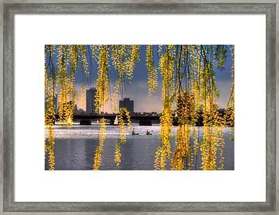 Kayaking On The Charles River - Boston Framed Print by Joann Vitali