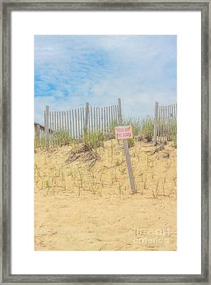 Keep Off The Dunes Framed Print by Randy Steele