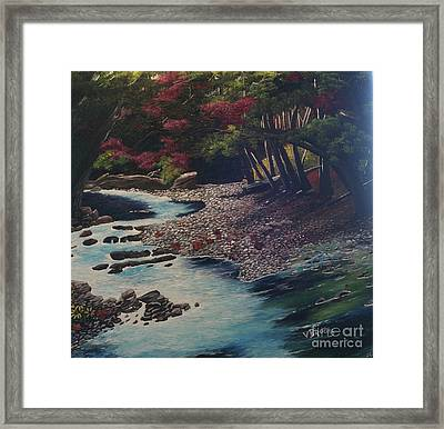 Kentucky   Creek Framed Print by Vickie Brooks