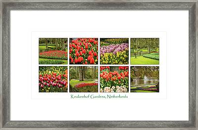 Keukenhof Garden Collage Framed Print by Jon Berghoff