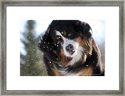 Kima And Love Framed Print by Angel Vallee