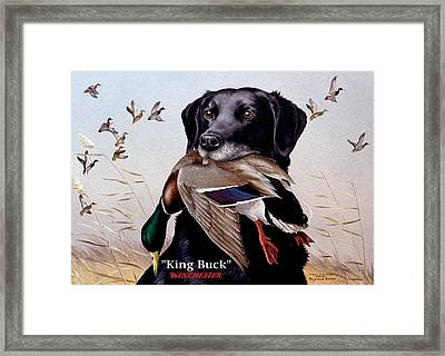 King Buck    1959 Federal Duck Stamp Artwork Framed Print by Maynard Reece