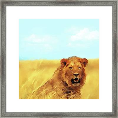 King Lion Framed Print by Gary Grayson