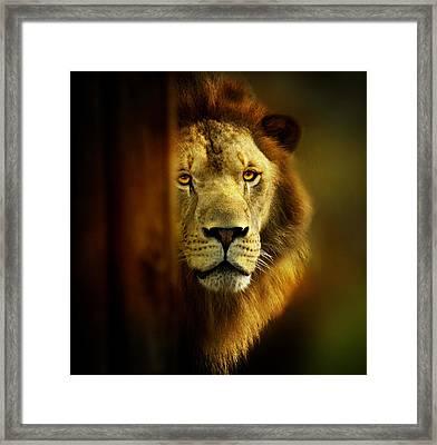 King Of The Jungle Framed Print by Christina Skibicki