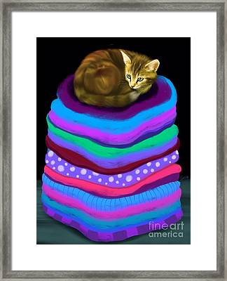 King Of The Laundry Framed Print by Nick Gustafson