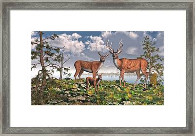 King Of The Mountain Framed Print by Mary Almond