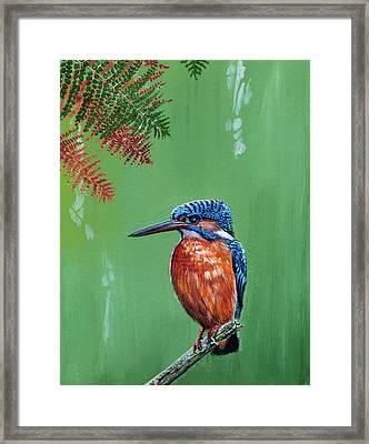 Kingfisher Framed Print by Arie Van der Wijst