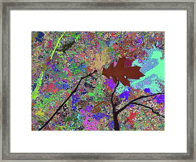 Kiss To The Sky In Fall Framed Print by Kenneth James