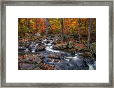 Kitchen Creek Framed Print by Mark Papke