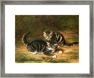 Kittens   Framed Print by Horatio Henry Couldery