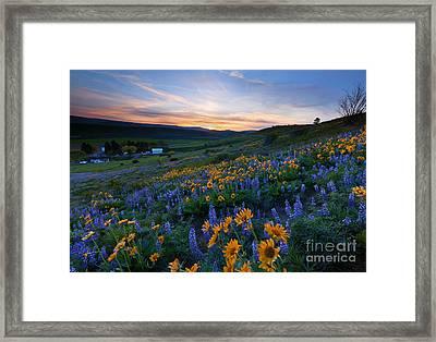 Kittitas Spring Sunset Framed Print by Mike Dawson