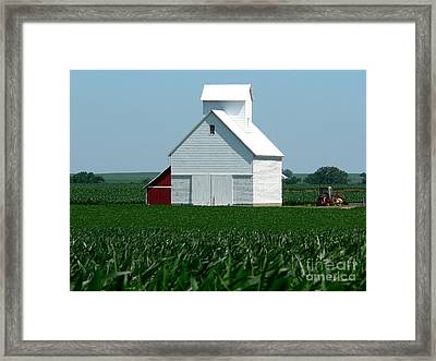 Knee High By The Fourth Of July Framed Print by David Bearden