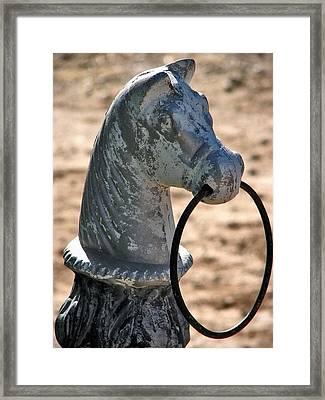 Knight Framed Print by Lisa S Baker