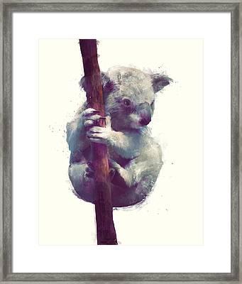 Koala Framed Print by Amy Hamilton