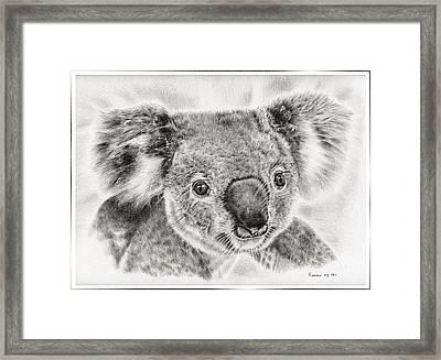 Koala Newport Bridge Gloria Framed Print by Remrov