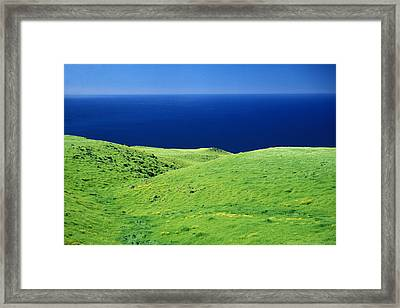 Kohala Mountain Rd Framed Print by Peter French - Printscapes
