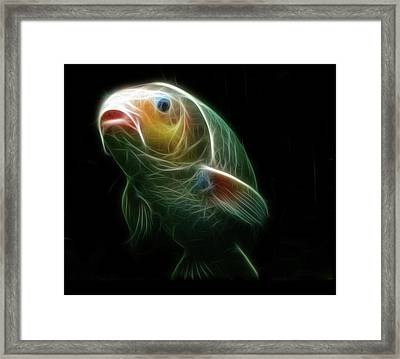 Koi Framed Print by Tilly Williams