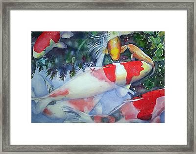 Koi Underwater Play Framed Print by June Conte  Pryor
