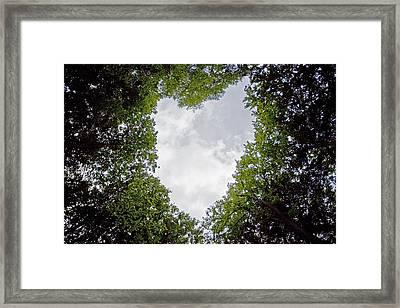 Kronenherz Framed Print by Renata Vogl